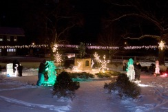 Ice sculptures in the park